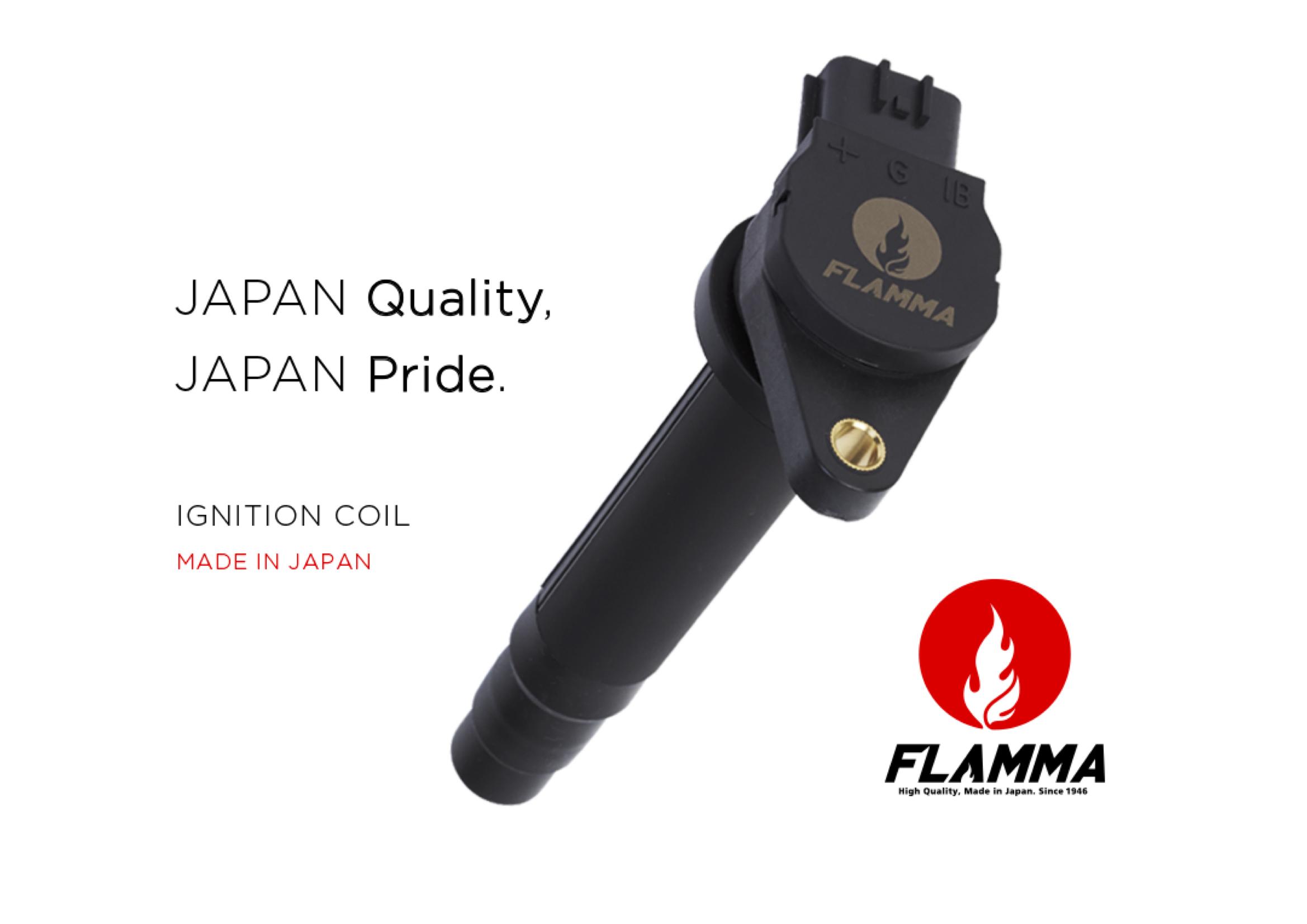 FLAMMA IGNITION COIL